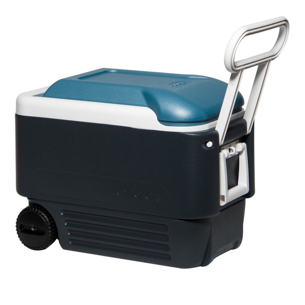 Igloo Maxcold roller cooler for beach