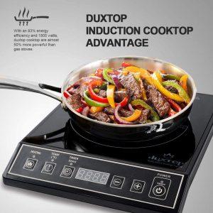 Duxtop Induction cooktop counter-top Burner